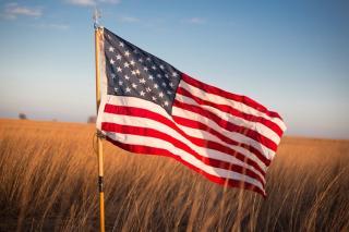 Flag in Wheat Field